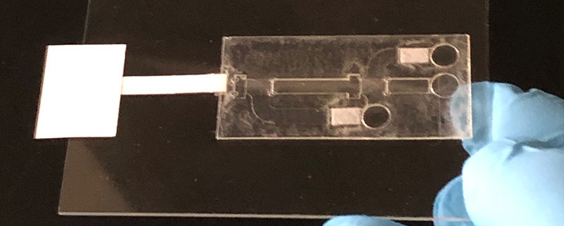 A prototype of the viral sensor CSU researchers have licensed to Quara Devices.