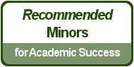 Recommended Minores for Academic Success
