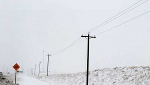 Transmission line galloping during blowing ice