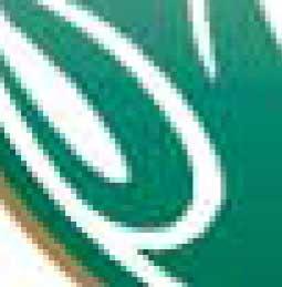 Colorado State University ram logo in JPEG format zoomed in