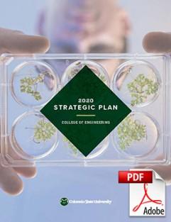 Cover of 2020 strategic plan PDF file