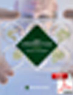 sample pixelated cover of 2020 strategic plan PDF file