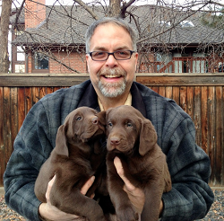 portrait of man and two puppies