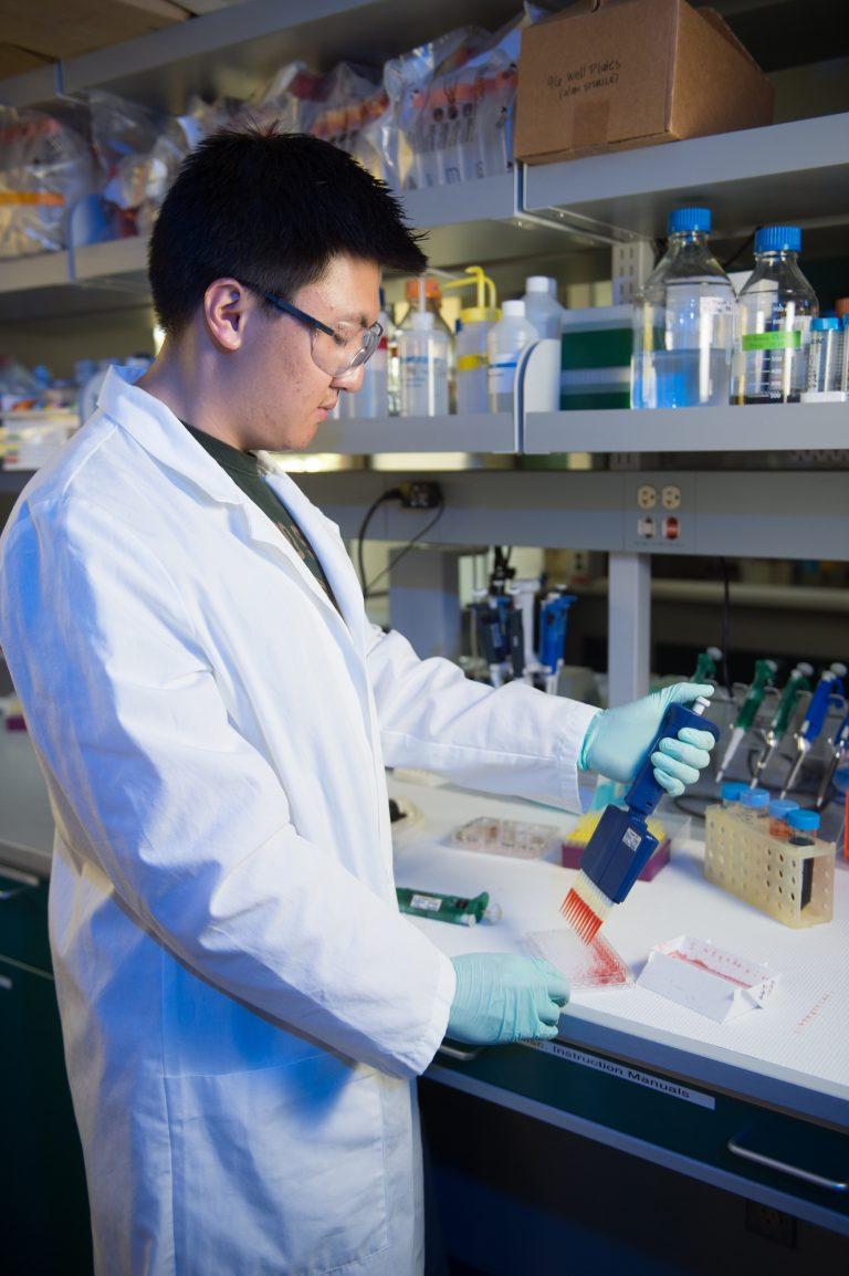 Male student in laboratory using pipette.