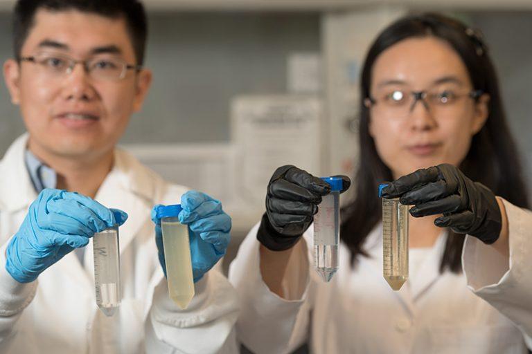 Tiezheng Tong and PhD student Xuewei