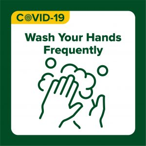 COVID-19 Health Protocols design with text: wash your hands frequently
