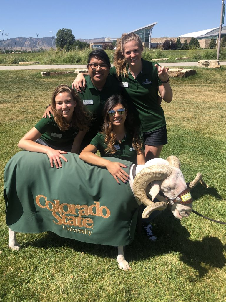 Four CSU students pose with Cam the Ram