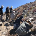 CSU students doing trailwork on Grays and Torreys