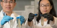Tiezheng Tong, Assistant Professor of Environmental Engineering, Civil and Environmental Engineering, and PhD student Xuewei, research water filtration in the Scott Bioengineering Building, Walter Scott Jr. College of Engineering, Colorado State University, August 1, 2018