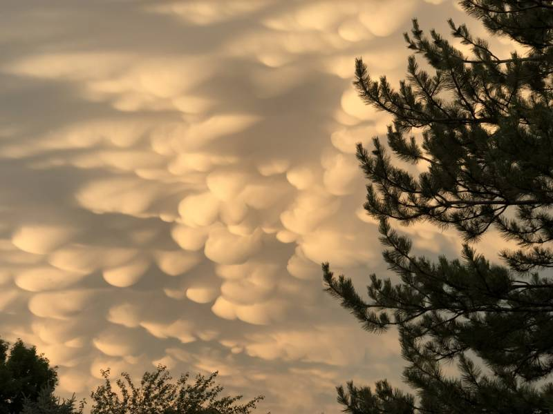 Mammatus clouds, associated with strong convection, grace a sunset over Fort Collins, Colorado, home of the NOAA Cooperative Institute for Research in the Atmosphere at Colorado State University. Photo credit: Steve Miller/CIRA